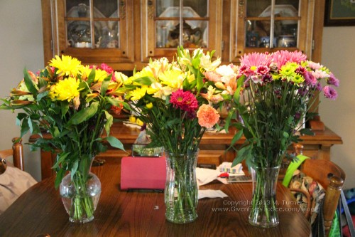 All of Mom's flowers on her dining table!
