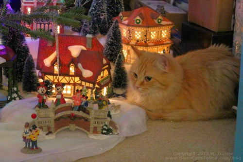 Ginger chilling in the Christmas Village under the tree.