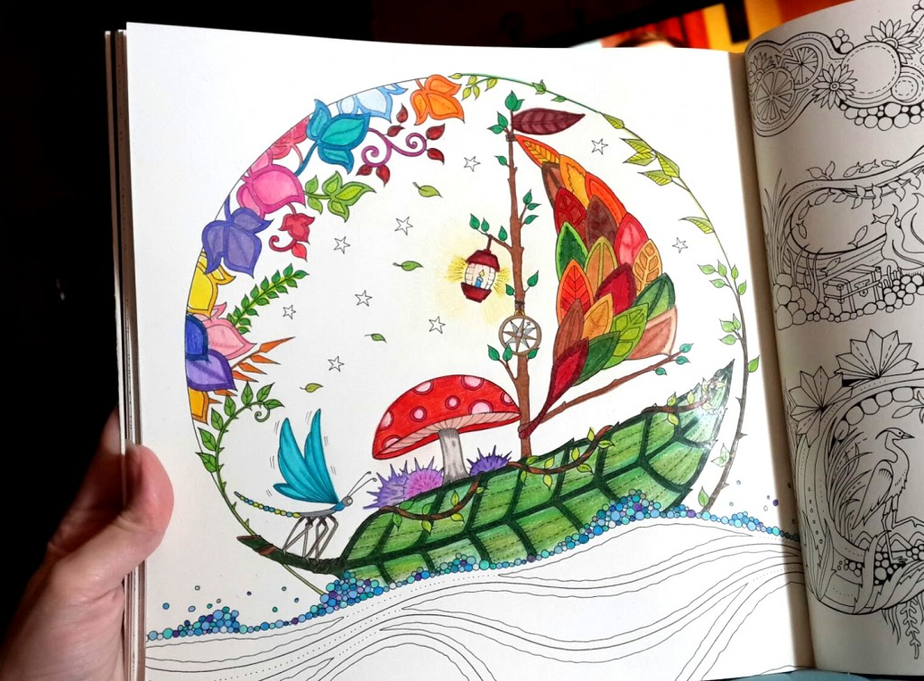 Coloring in progress shot of the adult coloring book page featuring a leaf sailboat from the Enchanted Forest coloring book.