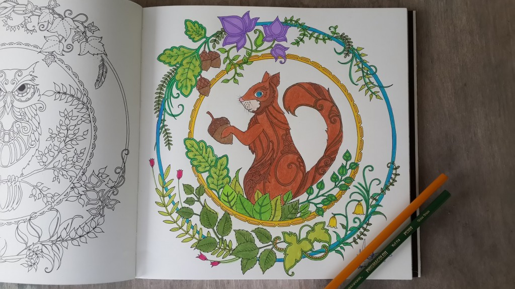 Squirrel colored page from the Enchanted Forest Coloring Book